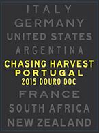 Chasing Harvest Douro Branco
